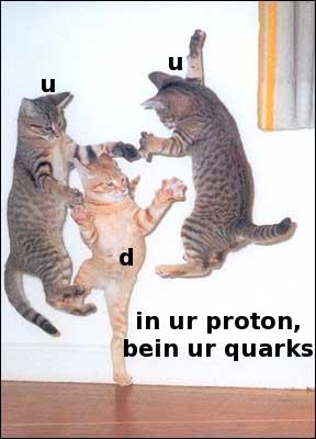 in ur proton, bein your quarks
